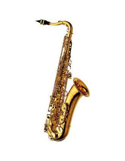 日本 YANAGISAWA  TENOR SAX / TWO-10